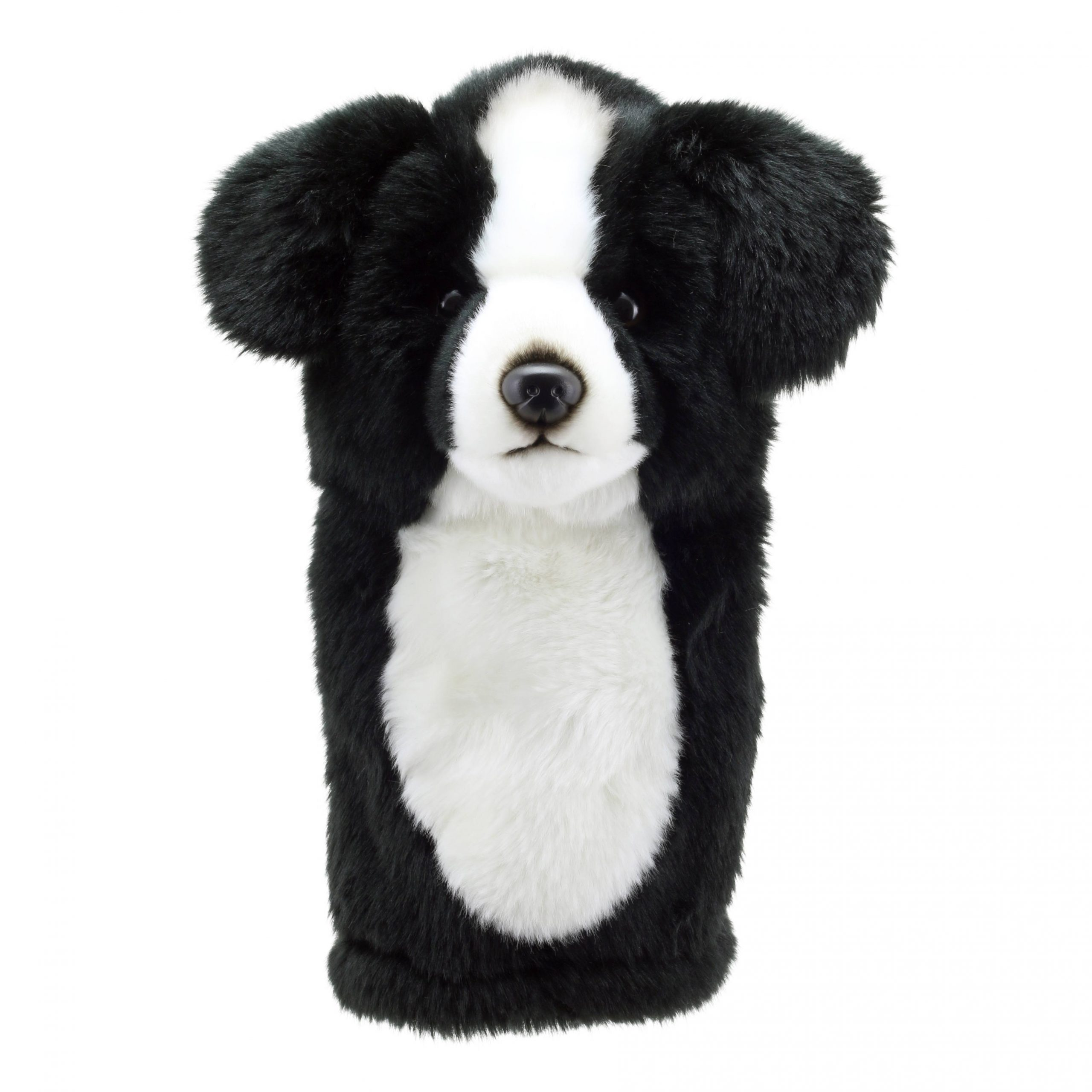 Border Collie - Golf Head Cover